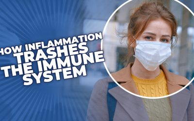 How Inflammation Trashes the Immune System