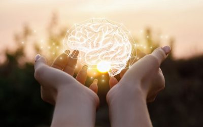 Build a Solid Foundation with Healthy Habits for a Healthy Brain